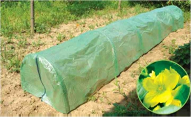 Tunnel greenhouse size 300x65x45 cm