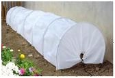 /en/products/greenhouse/tunnel-greenhouse---300x65x45-cm-2000075